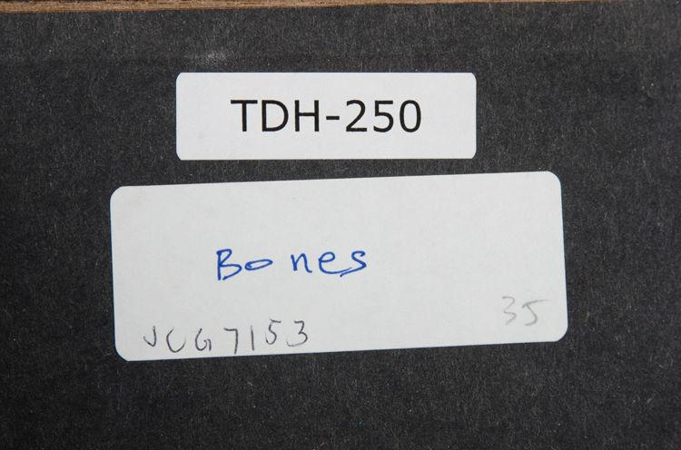 Picture of Bone Zone No. 1